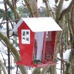 Vogeltränken und Futterstationen